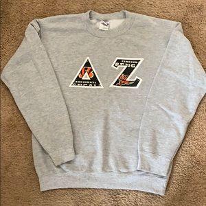 Delta Zeta Letter Sweatshirt
